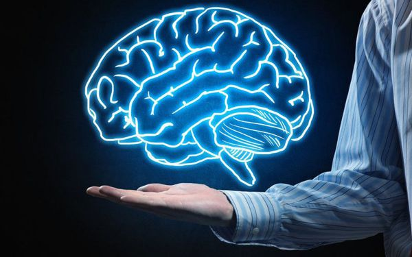 وظایف دو نیمکره مغز و تاثیر نقشه ذهنی درعملکرد آن
